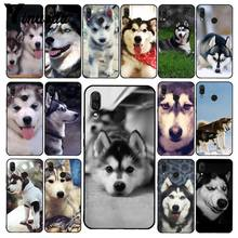 Yinuoda Alaskan Malamute Siberian Husky Dog กรณีโทรศัพท์สำหรับ Xiaomi Redmi8 4X 6A S2 Go Redmi 5Plus Note8 note5 7 Note8Pro(China)