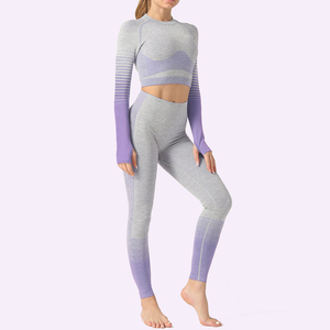 Женский комплект одежды для тренировок из 2 предметов, бесшовный укороченный Топ с длинным рукавом для йоги, спортивная одежда для трениров...
