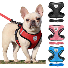Vest Leash-Set Dog-Accessories Puppy Cat-Harness Small Dogs Chihuahua Breathable Mesh