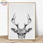 Deer Print Woodland ...