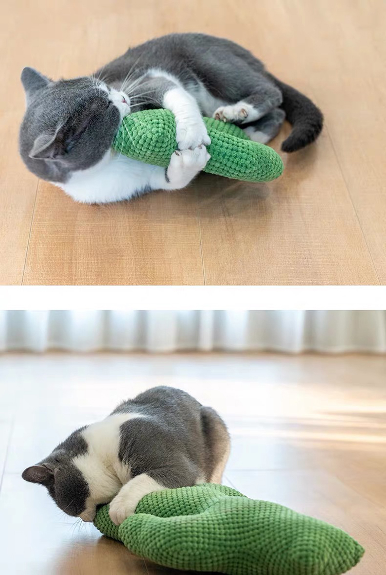 Cactus-Cat-Toy-with-Catnip-Cat-Toys-Interactive-Accessories-Corduroy-Fabric-Plant-Cats-Scratcher-Pillow-Pet-Supplies-Products-013