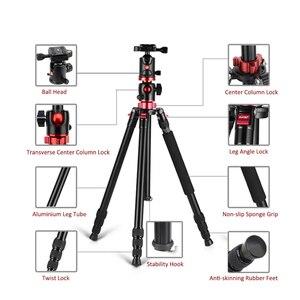 Image 4 - ZOMEI נסיעות מצלמה חצובה M8 אלומיניום חדרגל מקצועי חצובה גמיש עם טלפון מחזיק עבור שידור חי DSLR Canon Sony