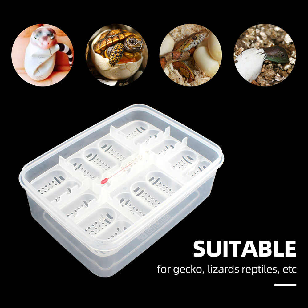 Reptile Incubation Box Suitable for Hatching Snake Lizards Reptiles with Thermometer Reptile Egg Box Reptile Breeding Box