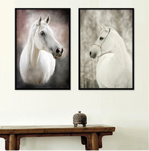 Animal White Horse Wall Art Canvas Posters and Prints Painting Wall Pictures for Living Room Modern Home Decor No Frame modern abstract oil painting posters and prints wall art canvas painting colorful rhythm pictures for living room decor no frame