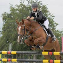 QHP Ridingbreeches Adult