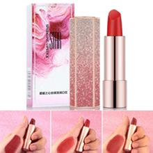 ZHENDUO 6 colors Women Fashion Moisturizing Starry matte lipstick  Maple Leaf Red Natural Long Lasting red Lip stick makeup