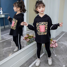 Girls Clothes Sets Kids Clothing Spring Autumn Girls Long Sleeve Hoodies + Pants 2pieces Sets Tracksuit Children Clothes Outfit