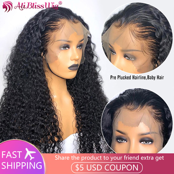 13×4 Lace Front Wig Brazilian