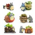 Reçine Totoro Succulents Bahçe Figürler Mini Saksı Süsler Minyatürleri peri Saksı Bahçe Yosun Gnome Dekorasyon El Sanatları