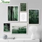 Nordic Green Tree Fo...