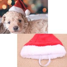Рождественский питомец Санта шляпа маленький щенок Кошка Собака Рождество праздник фотография
