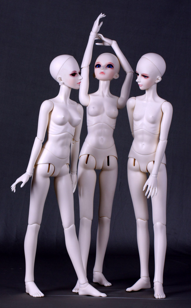 [wamami] Angel Of Dream 1/4 1/3 Female AOD Girl Nude Body BJD Doll Dollfie (Without Head)