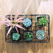 artificial succulents plant fake succulent greenery large aloe plants bathroom home accessories outdoor balcony decoration H0106