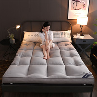 Thickened Stereoscopic Sanding Feather Velvet Mattress Student Dormitory Hotel Home Single Double King Queen Foldable Mattress