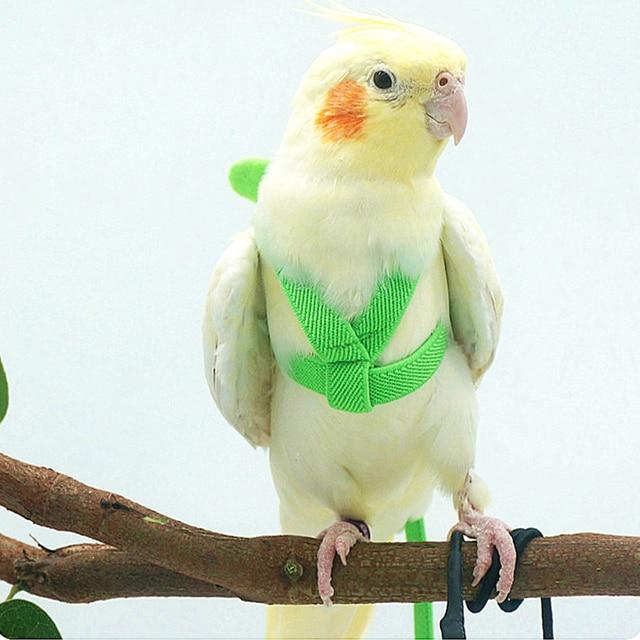 Anti-bite Flying Training Rope Parrot Bird Pet Leash Kits Ultralight Harness Leash For Budgerigar Lovebird Cockatiel Small Birds 6