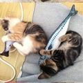 Имитация рыбы, игрушки для кошек, мягкая плюшевая игрушка в виде кошачьей мяты, интерактивные игрушки для кошек, подарки, забавная 3D кукла в ...