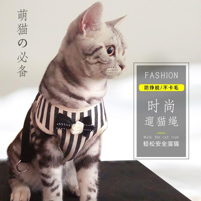 Suspender Strap Not Telescopic Rope Liu Mao Sheng Cat Break Free Thoracic Cat Anti-Chain Tied Mao Sheng Dog Universal Kittens No