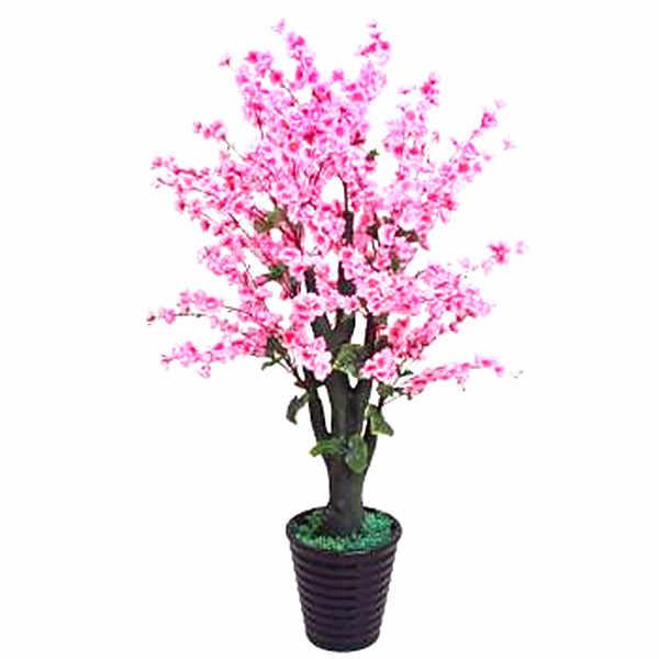 10 Pcs Mini Sakura Bonsai Bloem Cherry Blossoms Boom Zoals Azalea Bloem Rhododendron Bonsai Planten Voor Huis & Tuin Bonsai