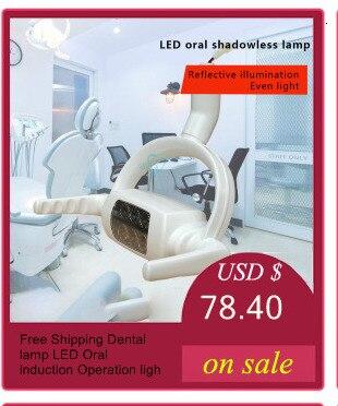 lâmpada oral para cadeira dental unidade pet cirurgia lâmpada