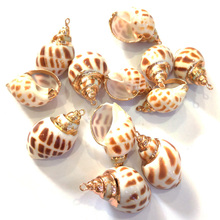 New Shell Pendants Jewelry Accessories for Necklace Bracelets Making Charms Pendant Handmade 18x30mm 20x40mm