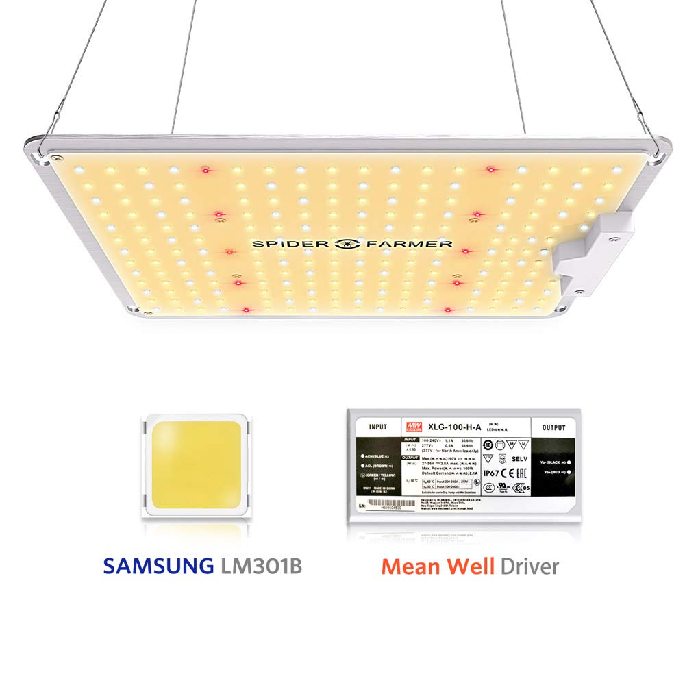 1000W Led Grow Light Lamp For Plants Full Spectrum Flowers Seedling Spider Farmer Samsung LM301B Meanwell Driver Growing Lights