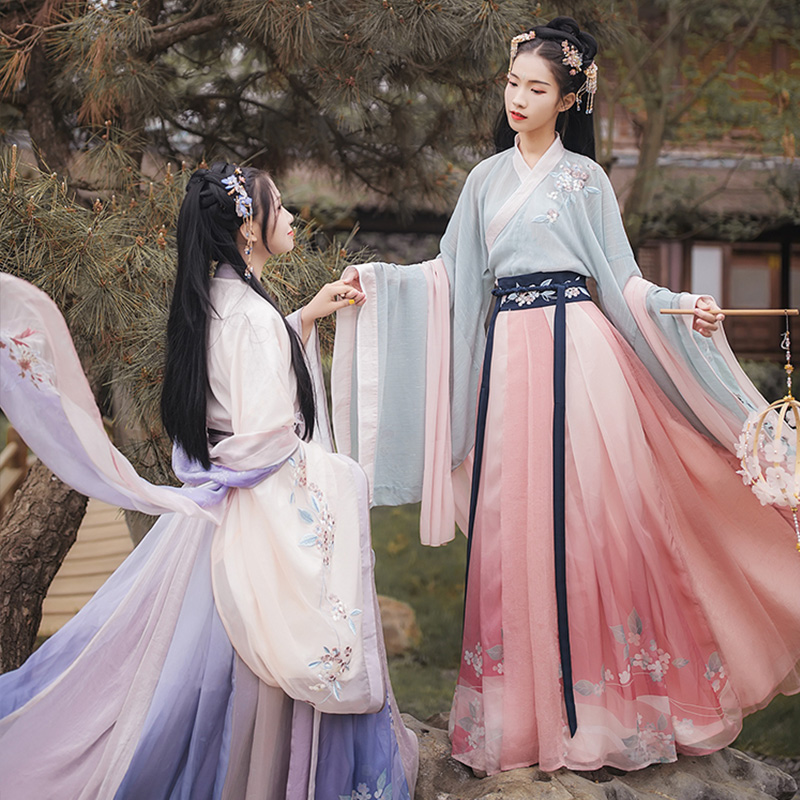 Traditional Hanfu Dance Costume Women Dynasty Costume Chinese Costume Oriental Dress Ancient Princess Clothing For Women DL4462