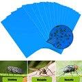 Moscas fortes armadilhas azul placa dupla lado erros pegajoso placa assassino de pragas 20 pçs pomar gnatsleaf pulgões captura insetos aphid
