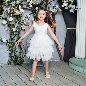 Image 2 - 2020 New Lace Tulle Girls Dress Kids Princess Dresses for Girl Party Wedding Dress With Sash Baby Clothes 1 6Y E1953