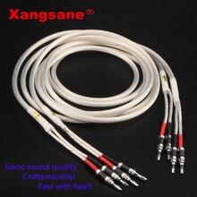 Xangsane cabo de alto-falante banhado em prata, um par, hi-fi, 4n ofc, fio de alto-falante para hi-fi, sistemas y cabo plug de banana para alto-falante