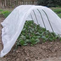 https://ae01.alicdn.com/kf/H2b3f3d791c9a4bbe9a445e3e8a611ed6L/정원-폴리-터널-온실-야채-과일-식물-케어-커버-금속-프레임-수호자-지붕-패널-호일-Hothouse.jpg