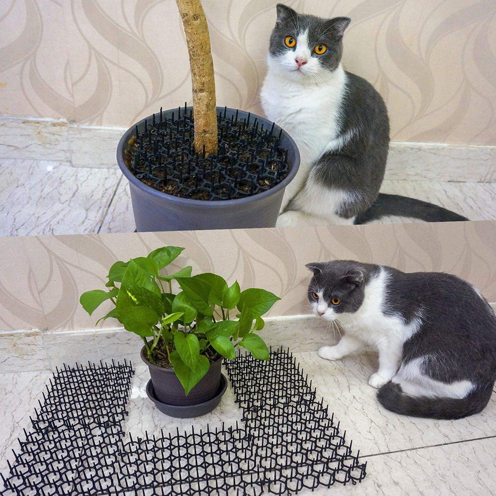 Garden Cat Scat Mats Anti-cat Prickle Strips Keep Cat Away Safe Plastic Spike Horticulture Protection Supplies
