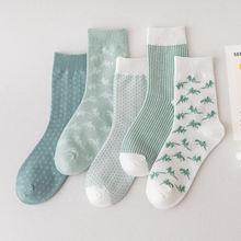 Прилив зеленые женские хлопчатобумажные носки модные резиновые