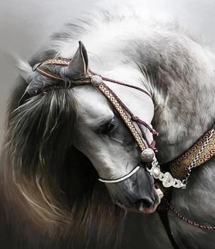 Broderie diamant chevaux blanc