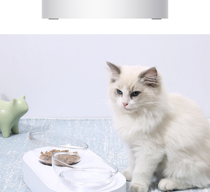 Image 3 - Xiaomi PETKIT Pet Bowl Feeding Dishes Adjustable Double Feeder Bowls Water Cup Cat Bowls Drinking Bowl Plastic / Stainless Steel
