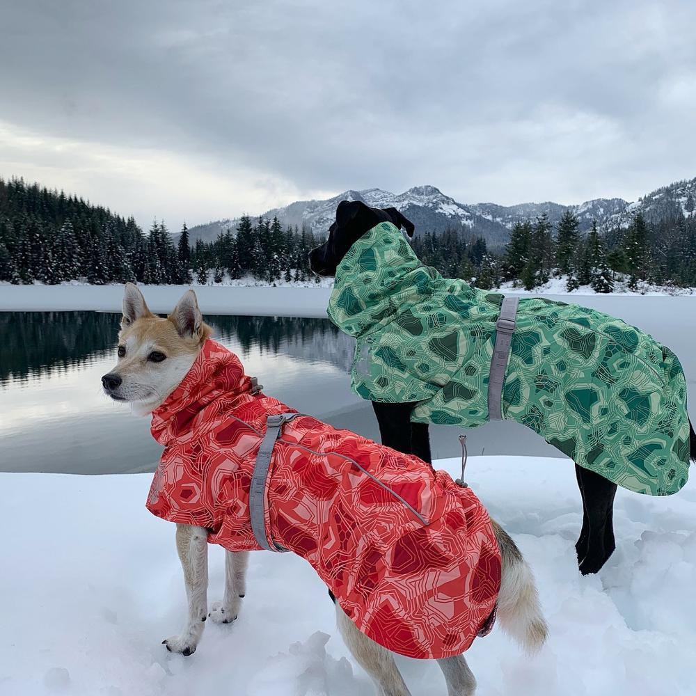 Одежда для собак, зимнее теплое ветрозащитное пальто, утепленная одежда для домашних животных, костюм для собак, комбинезон, куртка, лыжный костюм, товары для домашних животных, собак-0