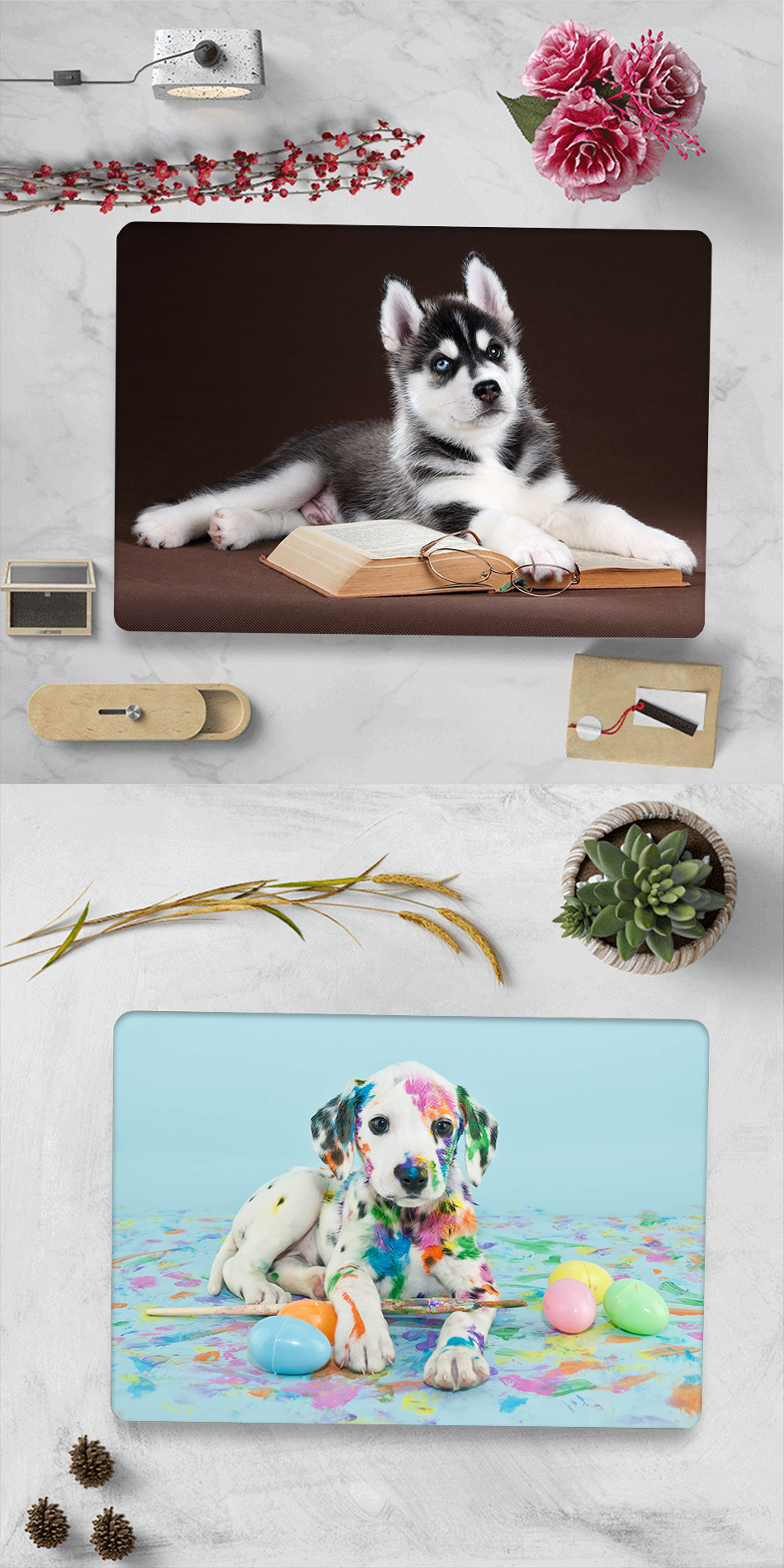 Cute Animal Case for MacBook 9