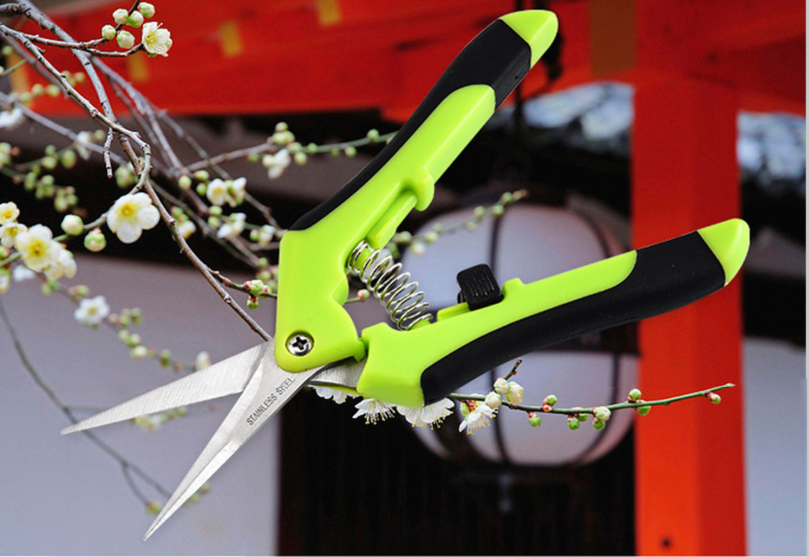 Garden Pruning Shear Fruit Picking Scissors Potted Trim Weed Branches Small Tool