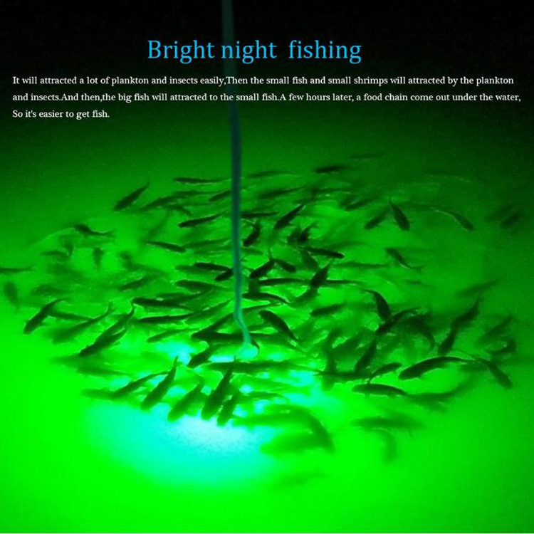 Fishing Light LED Underwater Double Waterproof Attract Squid Krill Pond Prawns Lures Outdoor Night Boat Lamp PC 30WGreen