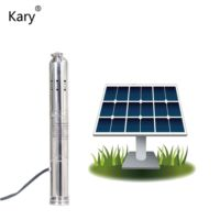 Kary factory price 3000l/h 12v lift 20m 1inch outlet dc solar brushless motor water pump for agriculture