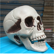 Horror Halloween props decoration large plastic skulls Party haunted house layout