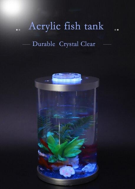 Mini Desktop Lighted Aquarium Fish Tank  3