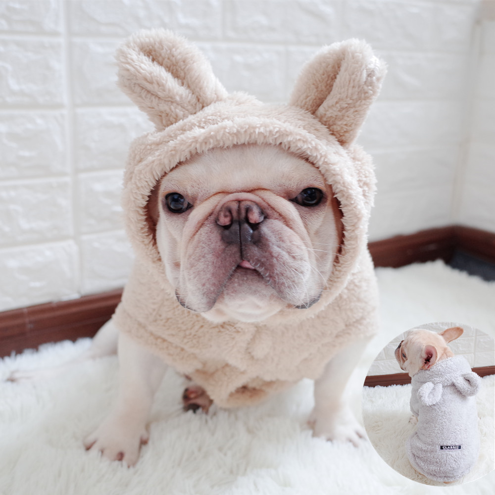 Autumn Hoodies for Dog | Bear Ear Hoodies for Small Dog | Warm Clothing for Dog
