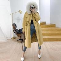 2019 Women Winter Windproof Real Fox Fur Collar Hooded Coat Duck Down Zippers Thick Jacket Female Warm Long Parkas