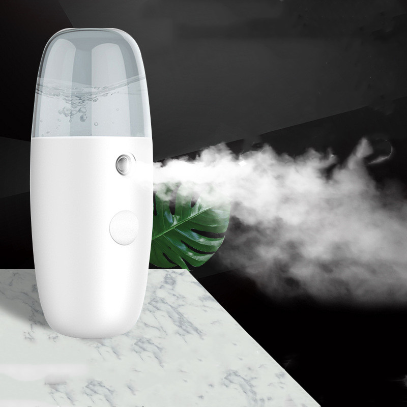 30ML Handheld Moisture Facial Steamer Ultrasonic Face Humidifier Sprayer USB Charging Nano Water Mist Maker Body Spray Nebulizer