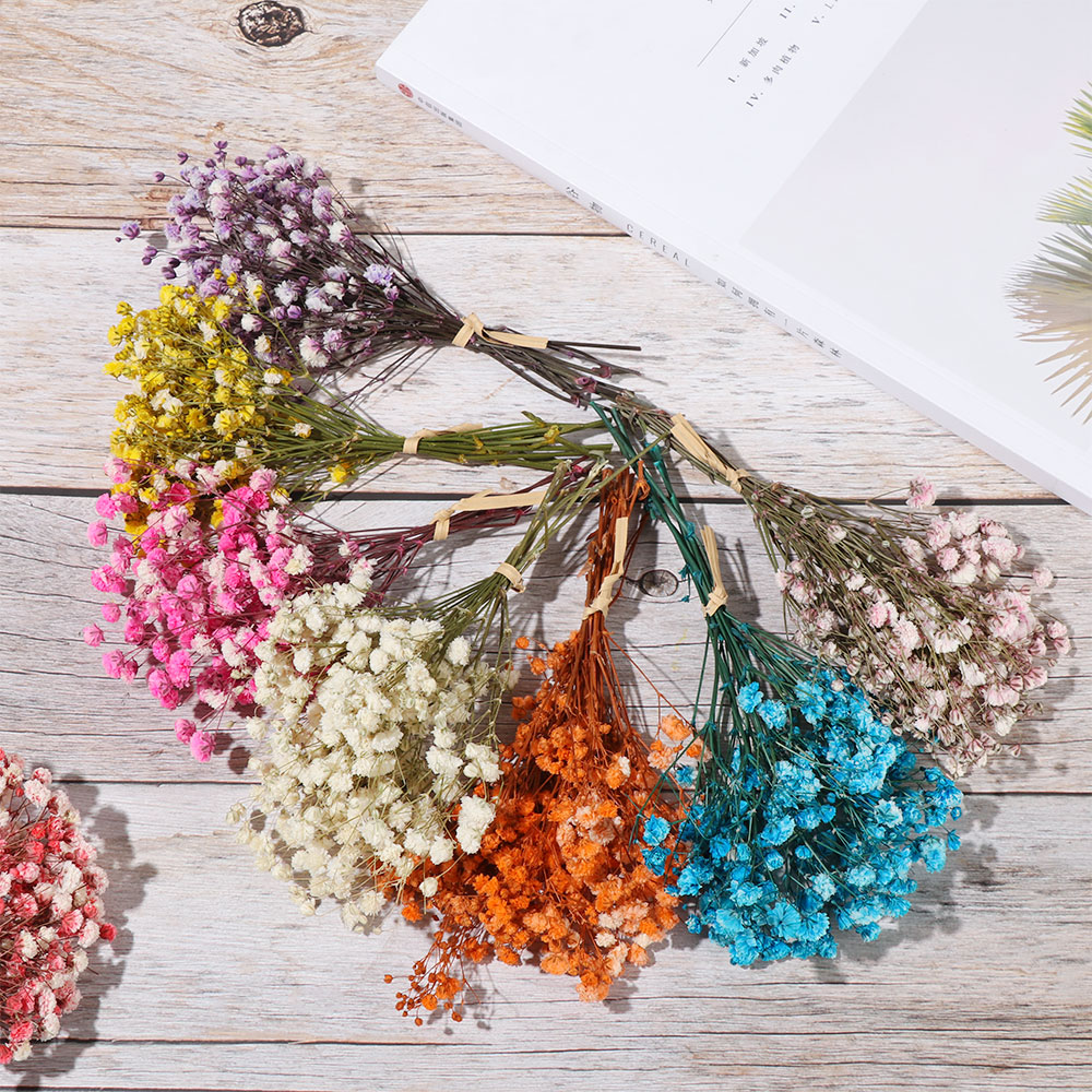 1 букет миниатюрных натуральных сушеных цветов, букет свежих сохраненных цветов, декоративный фон для фотосъемки