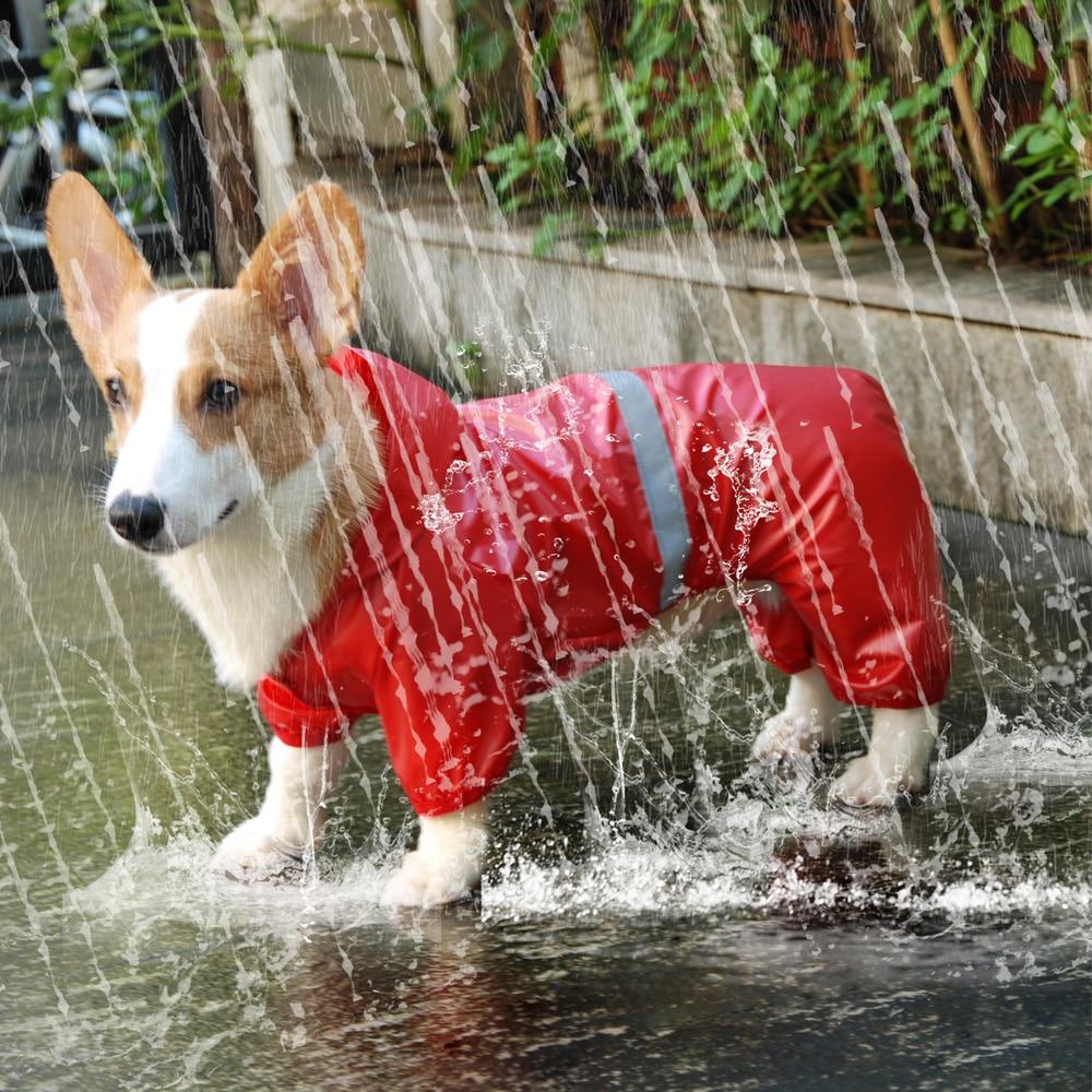 Pet Dog Waterproof Raincoat Jumpsuit Reflective Rain Coat Sunscreen Dog Outdoor Clothes Jacket for Small Dog Pet Supplies