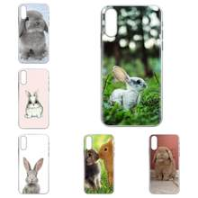 Free Baby Rabbits Bunny For Galaxy Note 10 A10E A10S A20S A30S A40S A50S A6S A70S A730 A8S M10S M30S Lite Plus Soft Print Phone(China)
