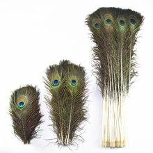 50-200 pçs/lote Real Natural Pavão Penas Para Crafts10-80cm DIY needlework Home Hotel decoração sala vaso decoração Do Casamento pluma