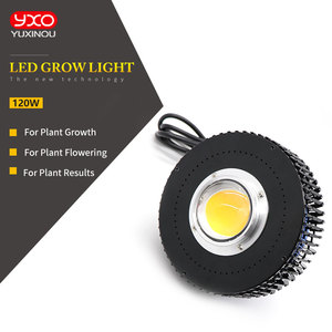 Image 3 - Davvero Uscita CREE CXB3590 100W Citizen 1212 COB LED Coltiva La Luce a Spettro Completo Crescere Lampada per le Piante Idroponica Tenda