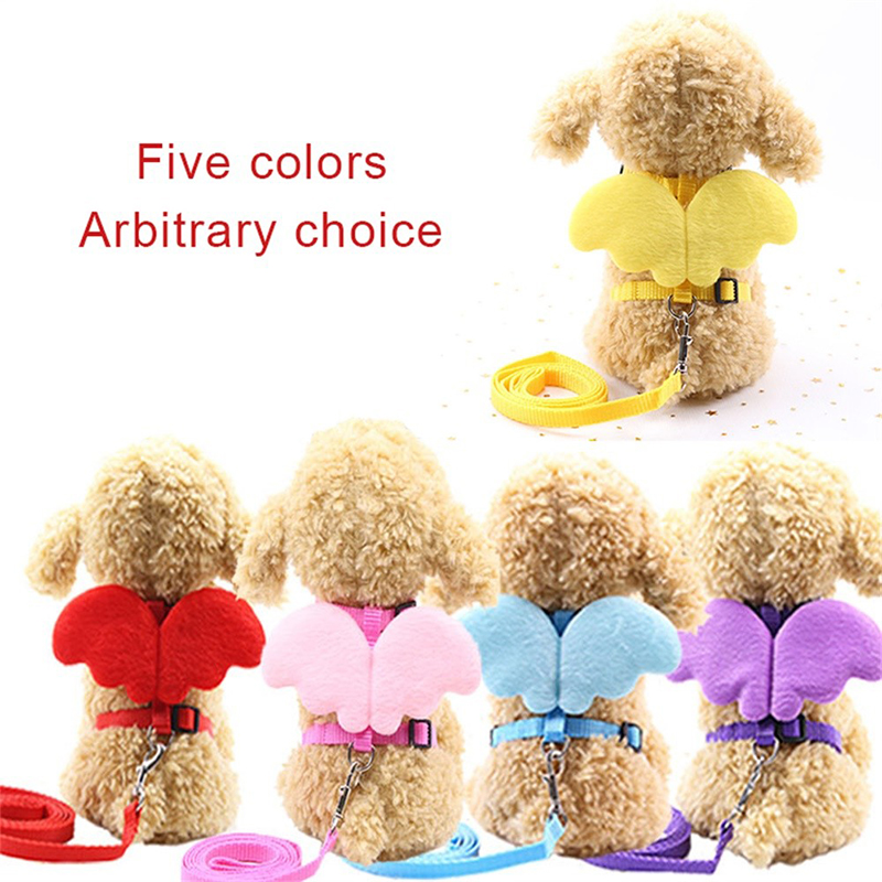 DogLemi pet products pet Traction Rope Angel chest back Cartoon wings dog collar New Traction dog puppy collar leash dogs in Leashes from Home Garden